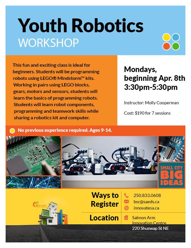 Youth Robotics