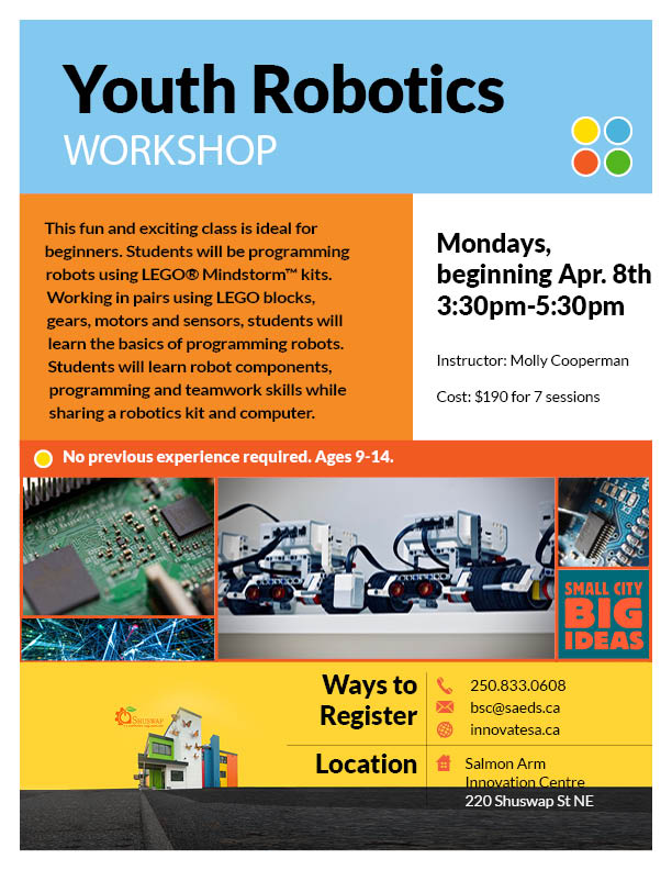Youth Robotics